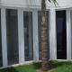 Foto de obra finalizada de Esquadria de PVC da Cristal Glass